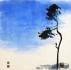 L'hiver bleu dans les pins 3